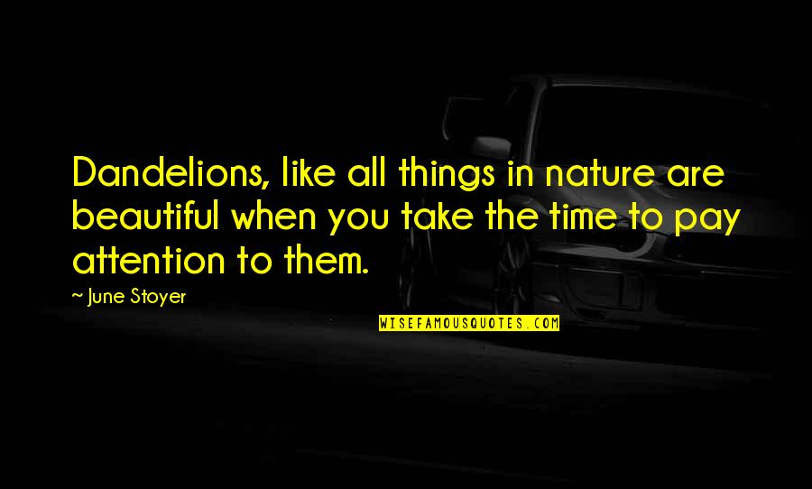 Things Of Beauty Quotes By June Stoyer: Dandelions, like all things in nature are beautiful