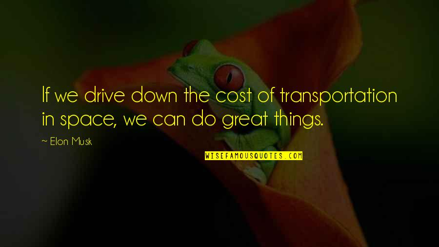 Things We Do Quotes By Elon Musk: If we drive down the cost of transportation