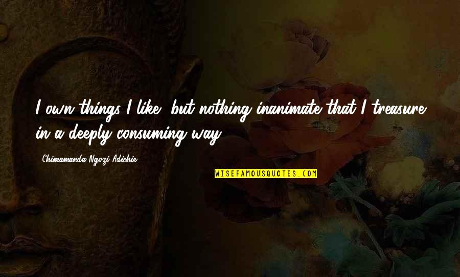 Things We Treasure Quotes By Chimamanda Ngozi Adichie: I own things I like, but nothing inanimate