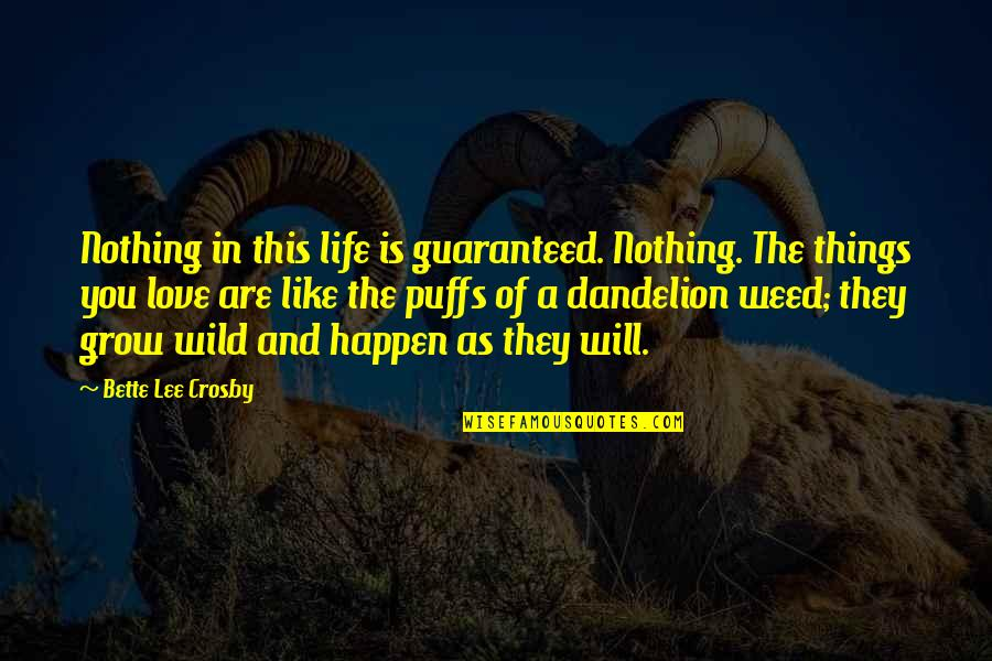 Things Will Happen Quotes By Bette Lee Crosby: Nothing in this life is guaranteed. Nothing. The