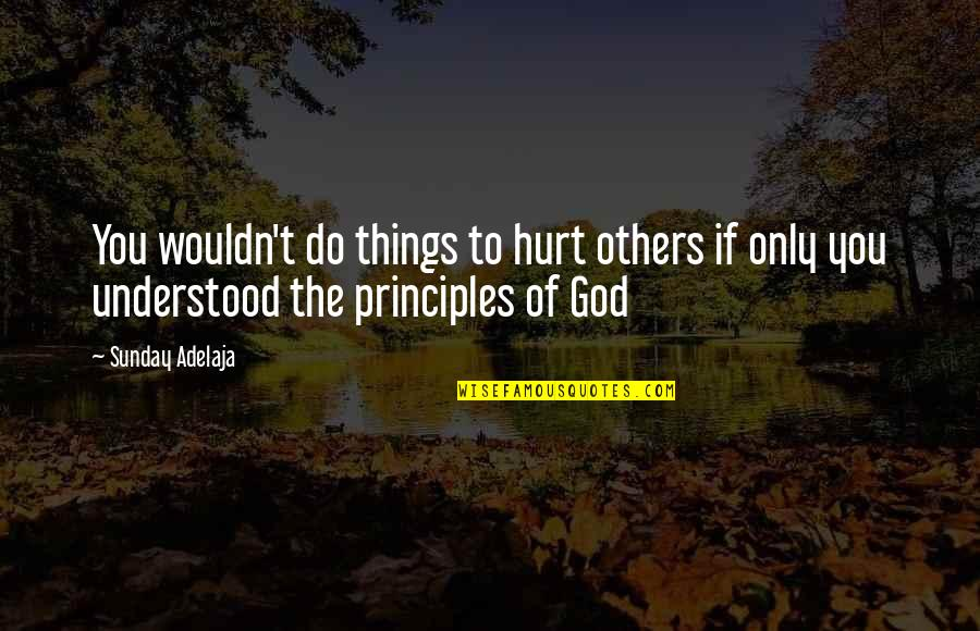 Things You Love Quotes By Sunday Adelaja: You wouldn't do things to hurt others if