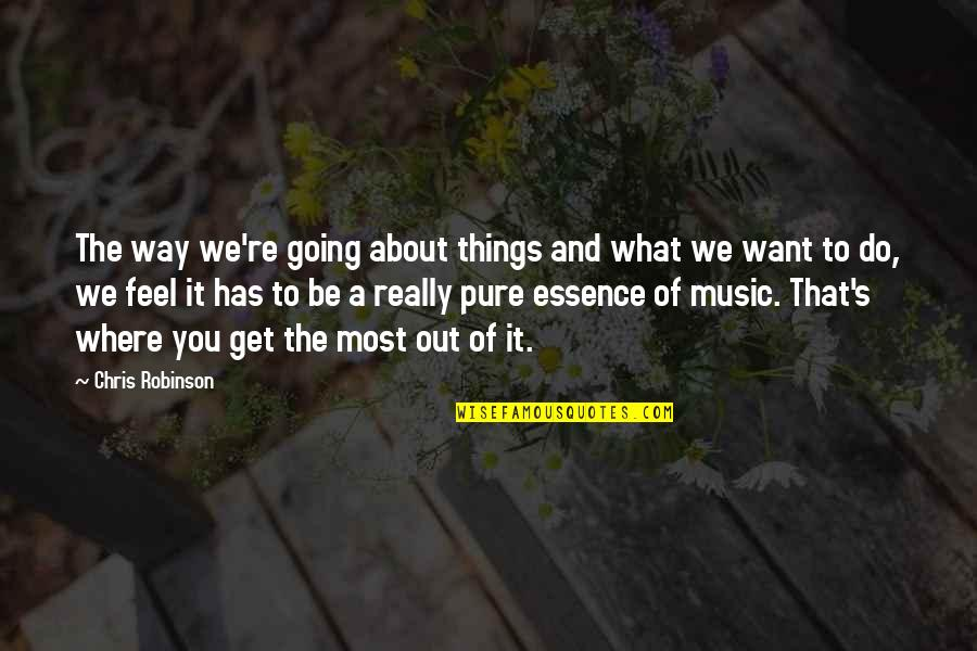 Things You Want Most Quotes By Chris Robinson: The way we're going about things and what