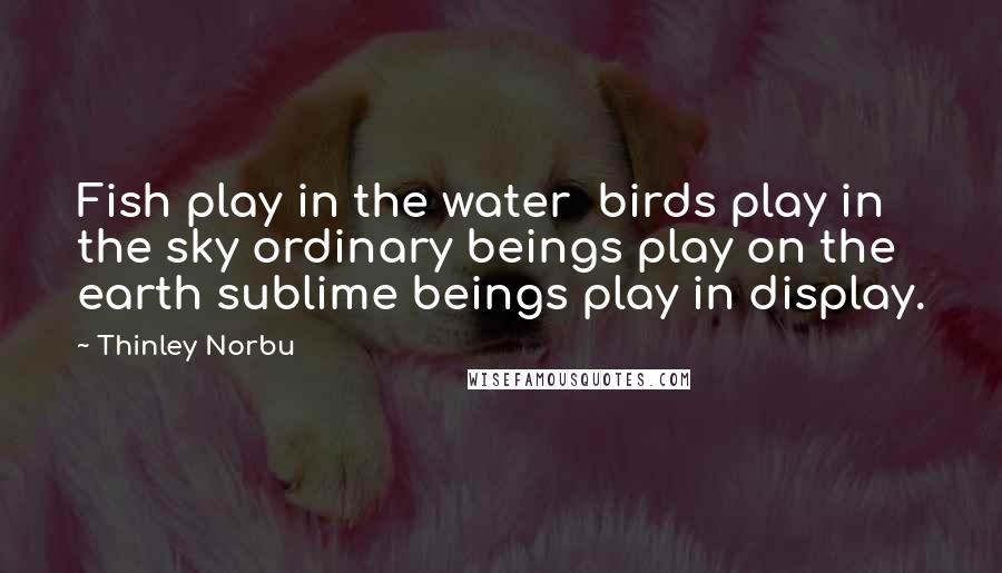 Thinley Norbu quotes: Fish play in the water birds play in the sky ordinary beings play on the earth sublime beings play in display.