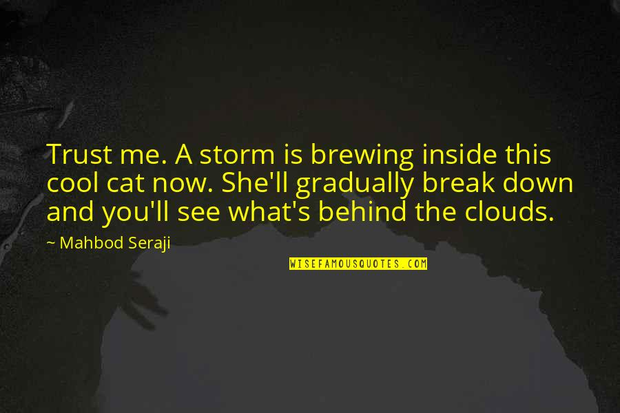 This Is Me Now Quotes By Mahbod Seraji: Trust me. A storm is brewing inside this