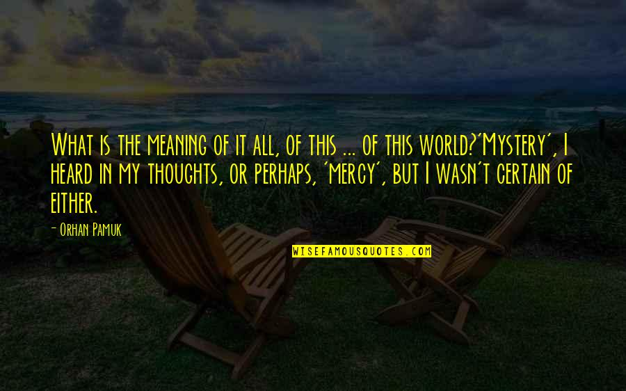 This Is My Life Quotes By Orhan Pamuk: What is the meaning of it all, of