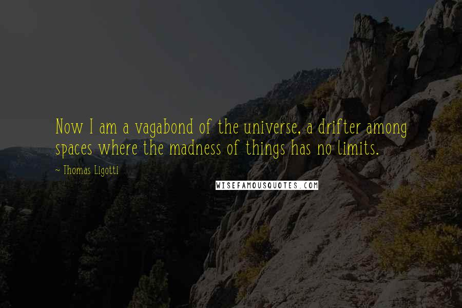 Thomas Ligotti quotes: Now I am a vagabond of the universe, a drifter among spaces where the madness of things has no limits.