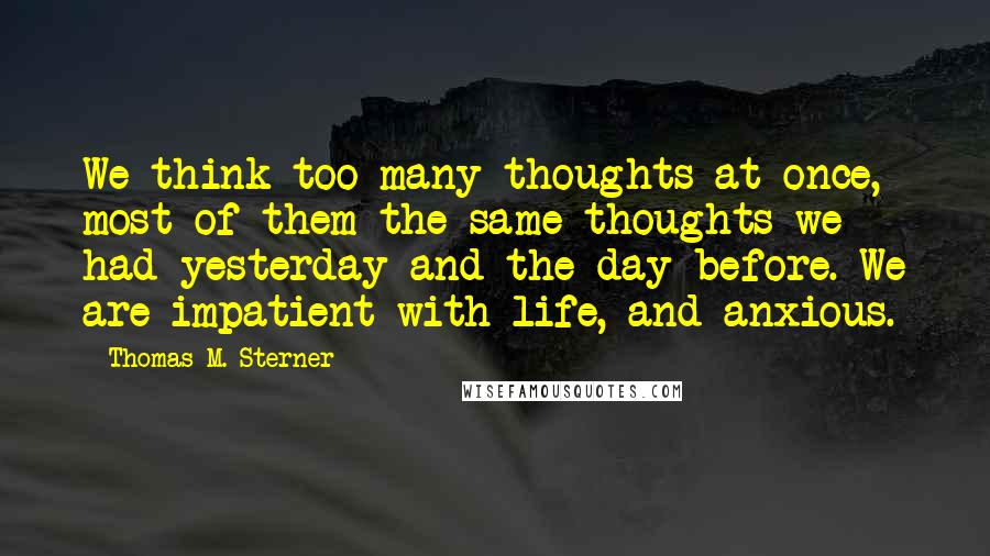Thomas M. Sterner quotes: We think too many thoughts at once, most of them the same thoughts we had yesterday and the day before. We are impatient with life, and anxious.