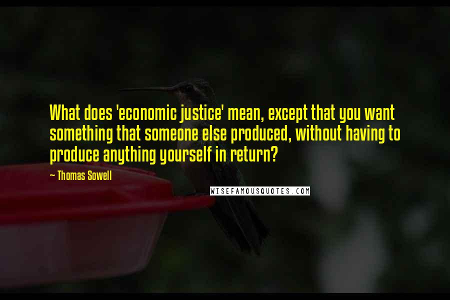 Thomas Sowell quotes: What does 'economic justice' mean, except that you want something that someone else produced, without having to produce anything yourself in return?