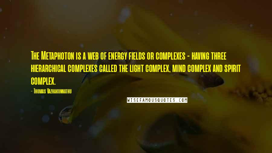 Thomas Vazhakunnathu quotes: The Metaphoton is a web of energy fields or complexes - having three hierarchical complexes called the light complex, mind complex and spirit complex.