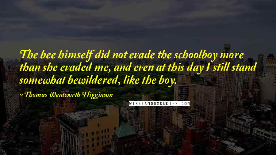 Thomas Wentworth Higginson quotes: The bee himself did not evade the schoolboy more than she evaded me, and even at this day I still stand somewhat bewildered, like the boy.