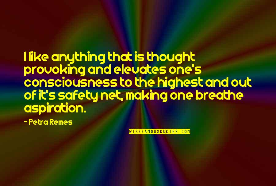 Thought Provoking Life Quotes By Petra Remes: I like anything that is thought provoking and