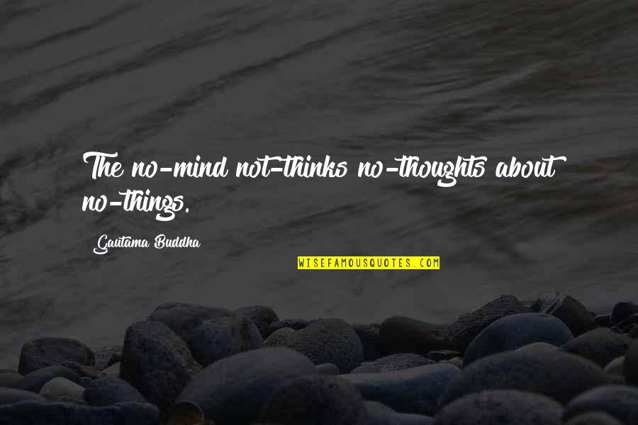 Thoughts Thinking Quotes By Gautama Buddha: The no-mind not-thinks no-thoughts about no-things.