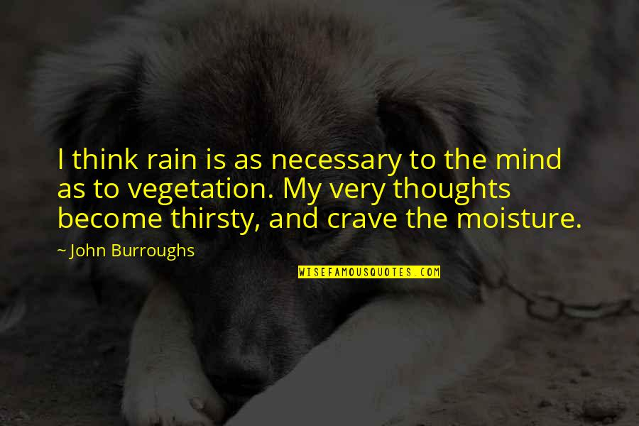Thoughts Thinking Quotes By John Burroughs: I think rain is as necessary to the
