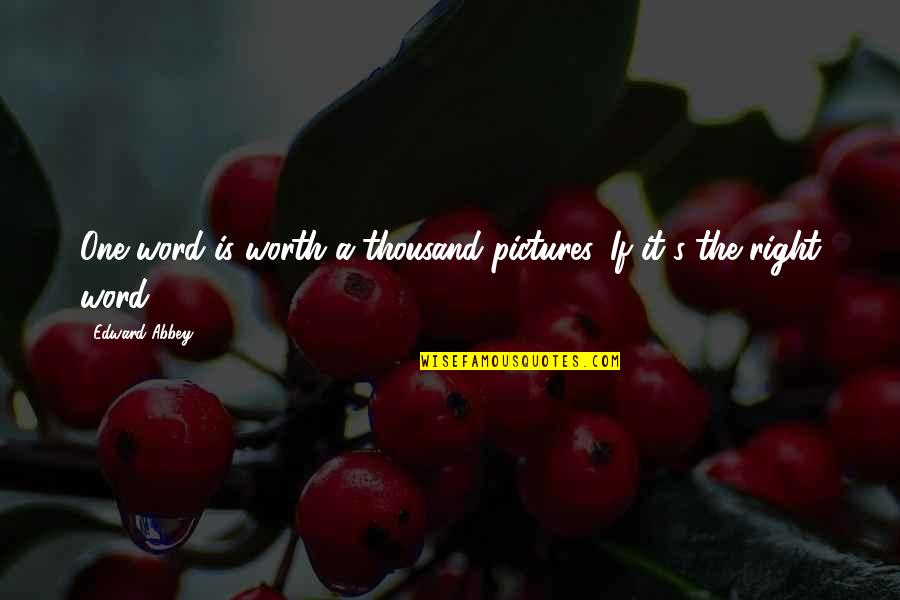 Thousand Words Quotes By Edward Abbey: One word is worth a thousand pictures. If
