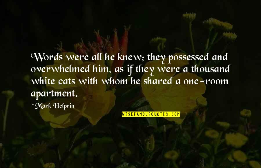 Thousand Words Quotes By Mark Helprin: Words were all he knew; they possessed and