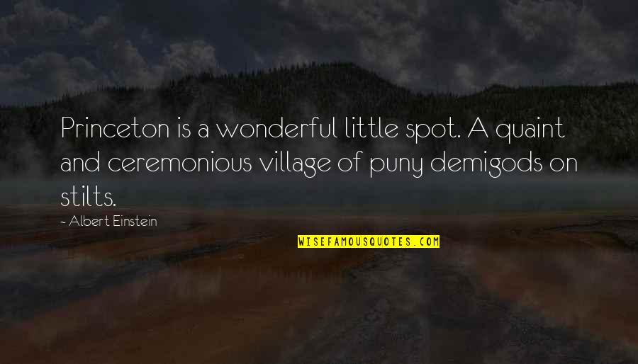 Threatened Habitats Quotes By Albert Einstein: Princeton is a wonderful little spot. A quaint