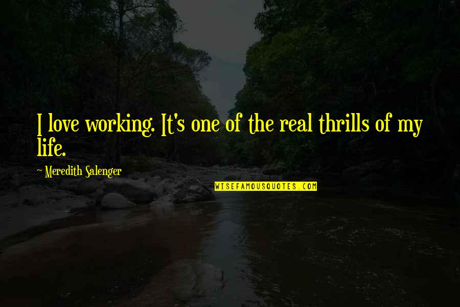Thrills Of Life Quotes By Meredith Salenger: I love working. It's one of the real