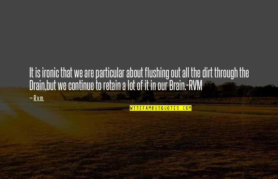 Through It All Quotes By R.v.m.: It is ironic that we are particular about