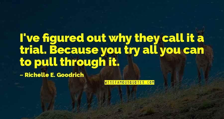 Through It All Quotes By Richelle E. Goodrich: I've figured out why they call it a