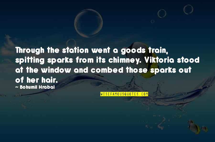 Through The Window Quotes By Bohumil Hrabal: Through the station went a goods train, spitting