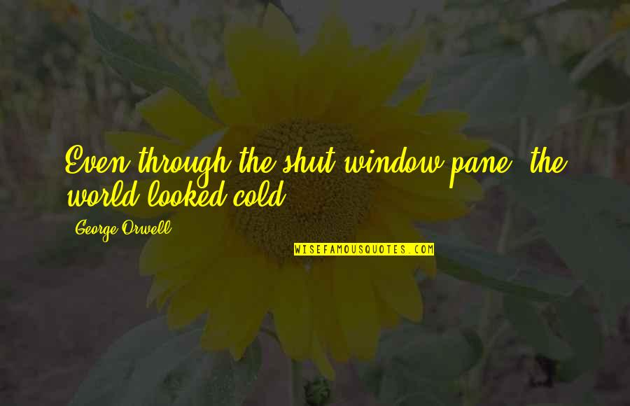 Through The Window Quotes By George Orwell: Even through the shut window pane, the world