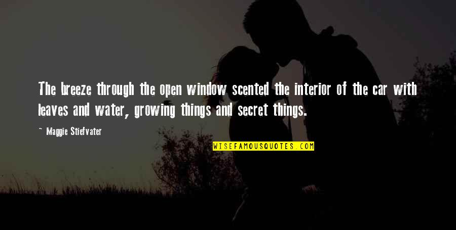 Through The Window Quotes By Maggie Stiefvater: The breeze through the open window scented the