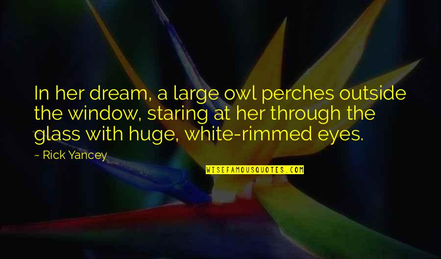 Through The Window Quotes By Rick Yancey: In her dream, a large owl perches outside