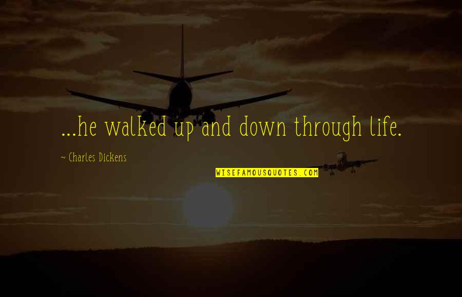 Through Up And Down Quotes By Charles Dickens: ...he walked up and down through life.