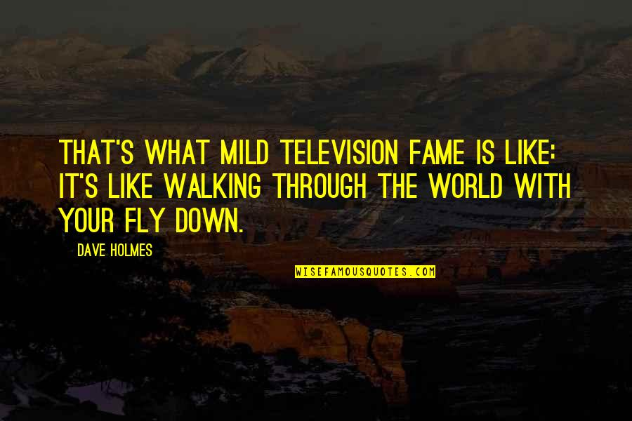 Through Up And Down Quotes By Dave Holmes: That's what mild television fame is like: it's