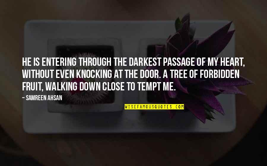 Through Up And Down Quotes By Samreen Ahsan: He is entering through the darkest passage of