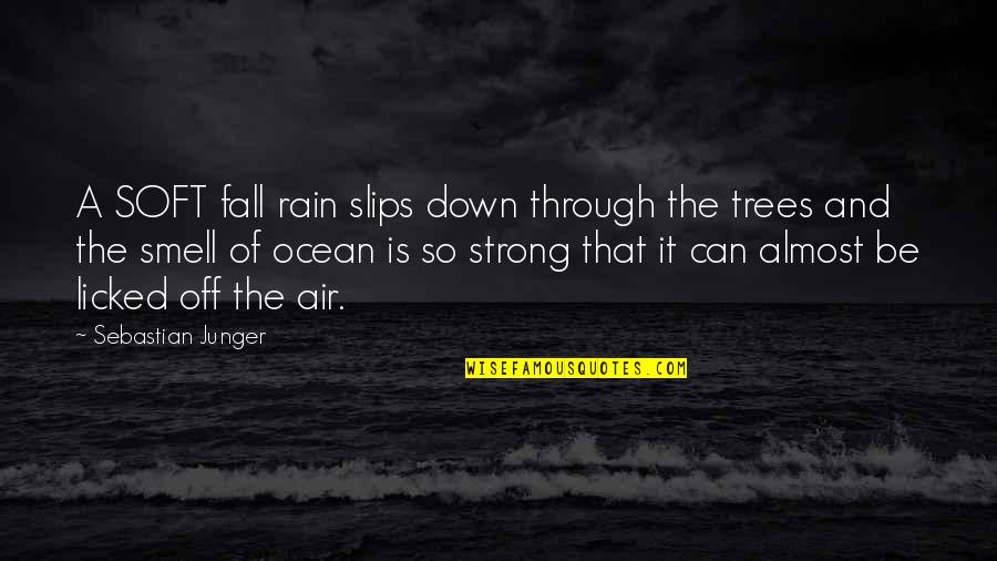 Through Up And Down Quotes By Sebastian Junger: A SOFT fall rain slips down through the