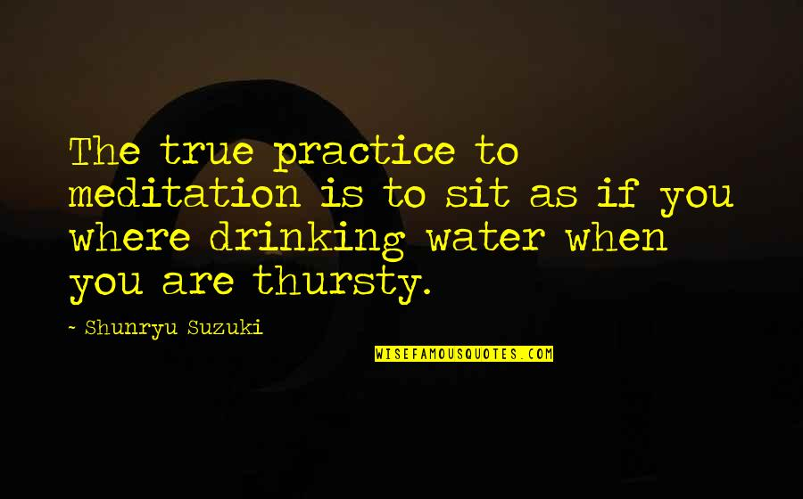 Thursty Quotes By Shunryu Suzuki: The true practice to meditation is to sit
