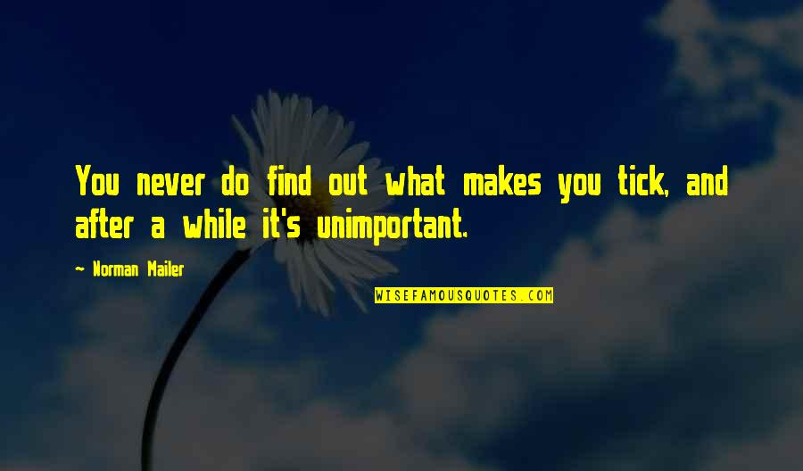 Tick Quotes By Norman Mailer: You never do find out what makes you