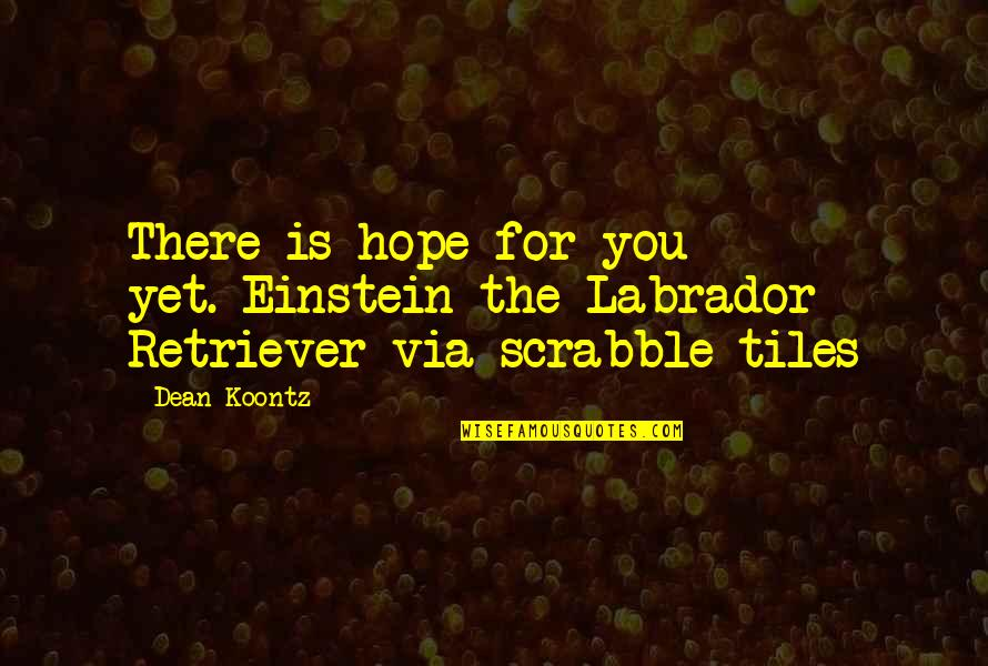 Tiles Quotes By Dean Koontz: There is hope for you yet.-Einstein the Labrador