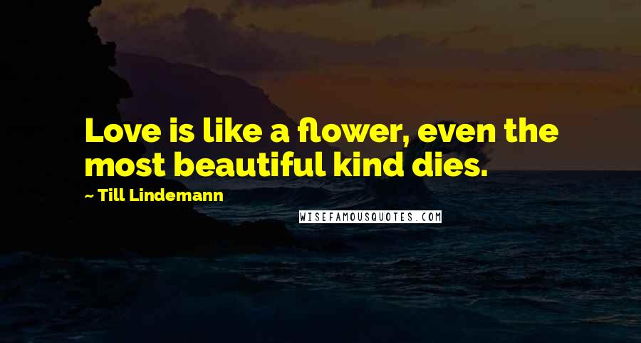 Till Lindemann quotes: Love is like a flower, even the most beautiful kind dies.