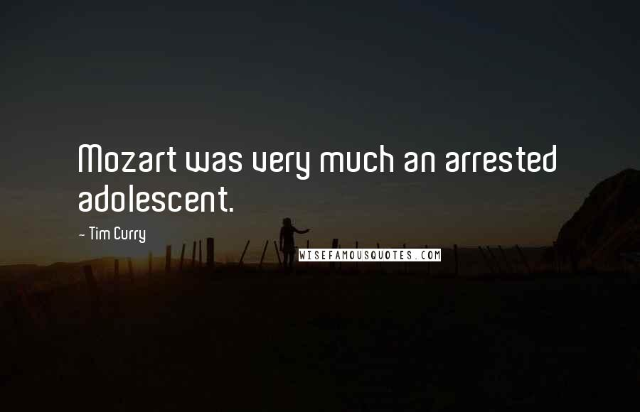 Tim Curry quotes: Mozart was very much an arrested adolescent.