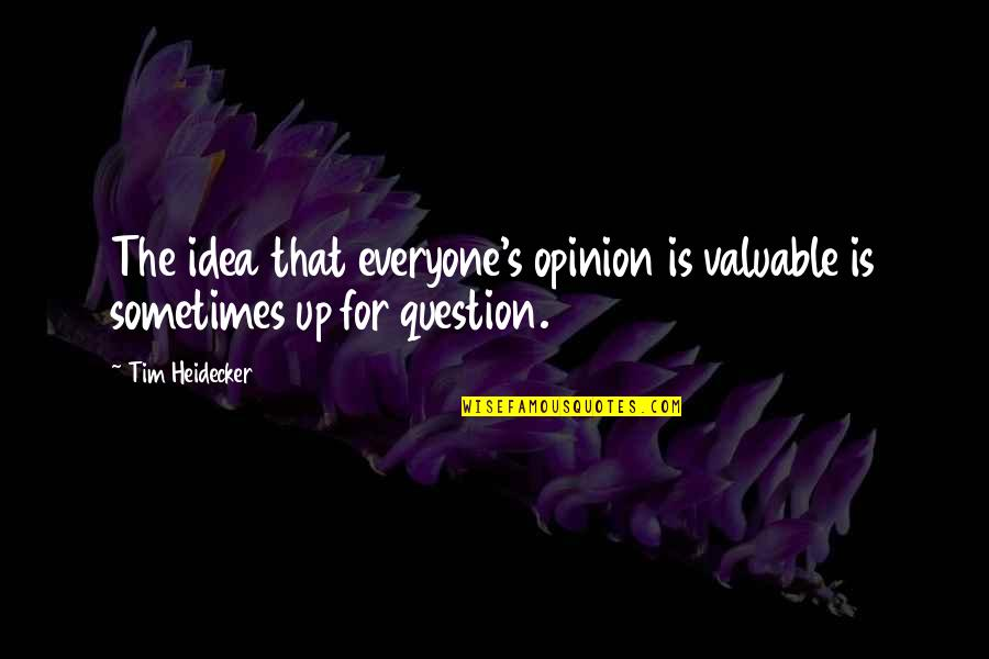 Tim Heidecker Quotes By Tim Heidecker: The idea that everyone's opinion is valuable is