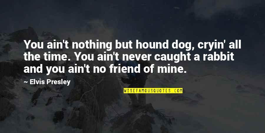 Time And Friendship Quotes By Elvis Presley: You ain't nothing but hound dog, cryin' all