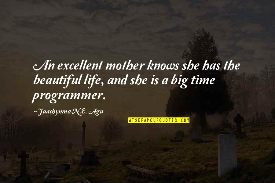 Time And Marriage Quotes By Jaachynma N.E. Agu: An excellent mother knows she has the beautiful