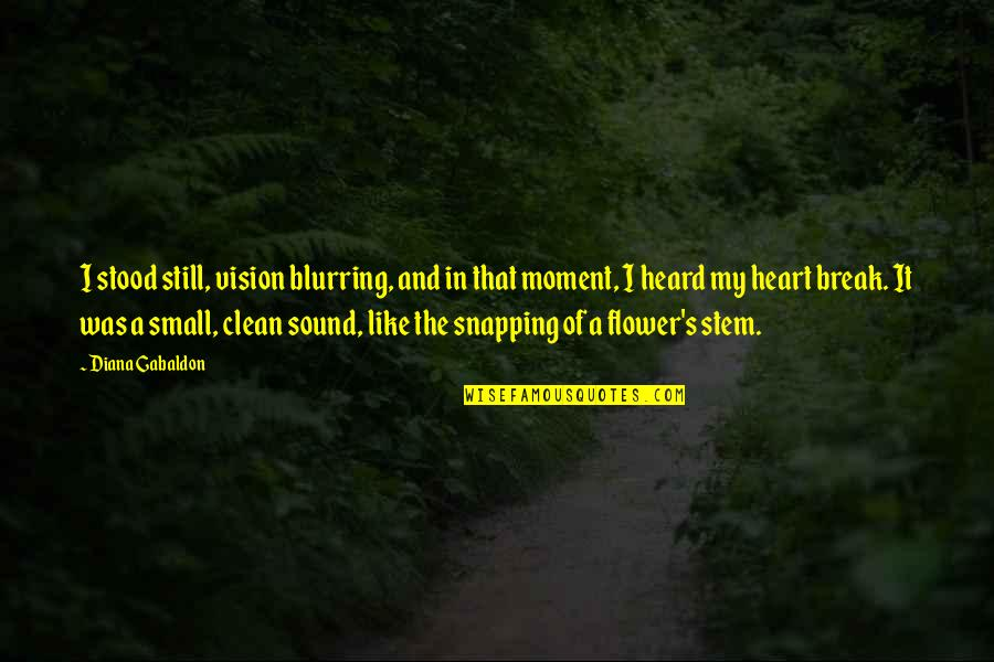 Time And Travel Quotes By Diana Gabaldon: I stood still, vision blurring, and in that