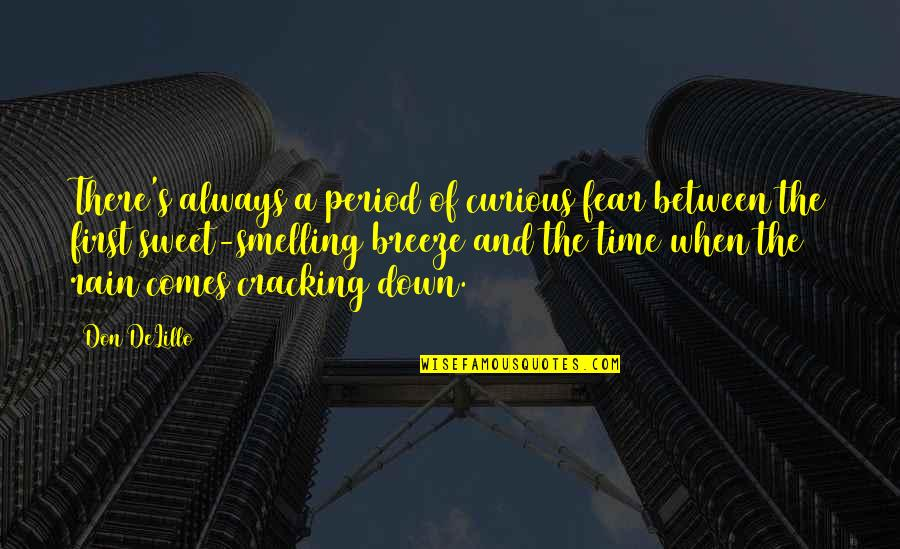 Time Comes Quotes By Don DeLillo: There's always a period of curious fear between