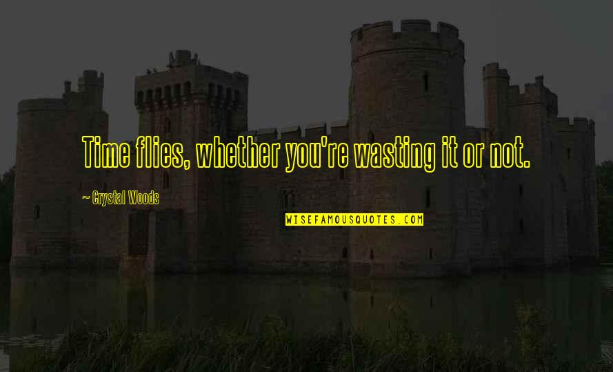 Time Flies Family Quotes By Crystal Woods: Time flies, whether you're wasting it or not.