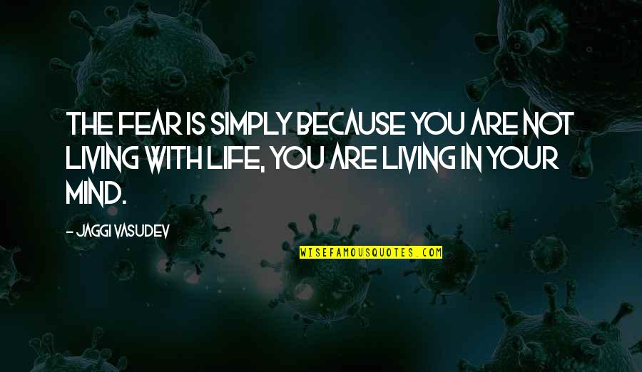 Time Flies So Fast My Son Quotes By Jaggi Vasudev: The fear is simply because you are not