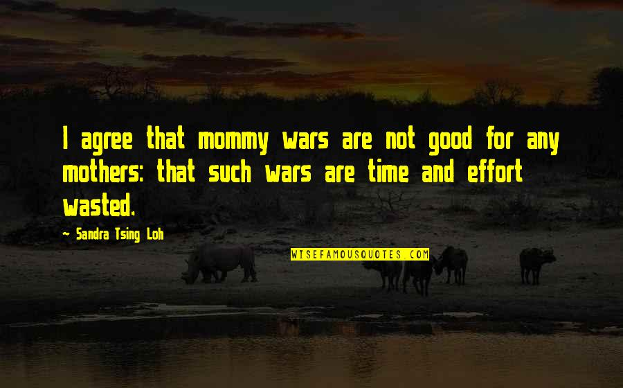 Time Not Wasted Quotes By Sandra Tsing Loh: I agree that mommy wars are not good