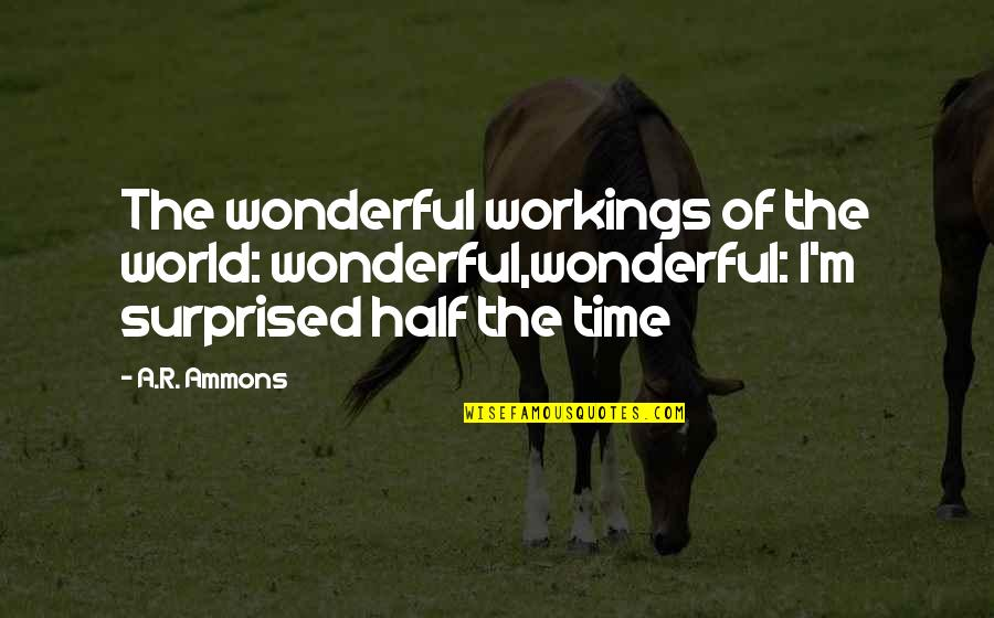 Time Of Quotes By A.R. Ammons: The wonderful workings of the world: wonderful,wonderful: I'm