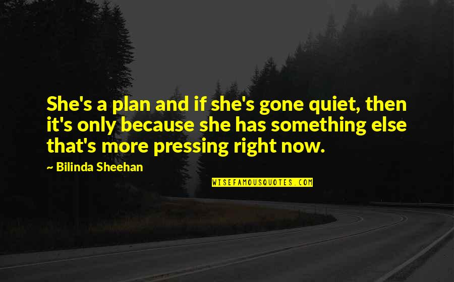Time Paradox Quotes By Bilinda Sheehan: She's a plan and if she's gone quiet,