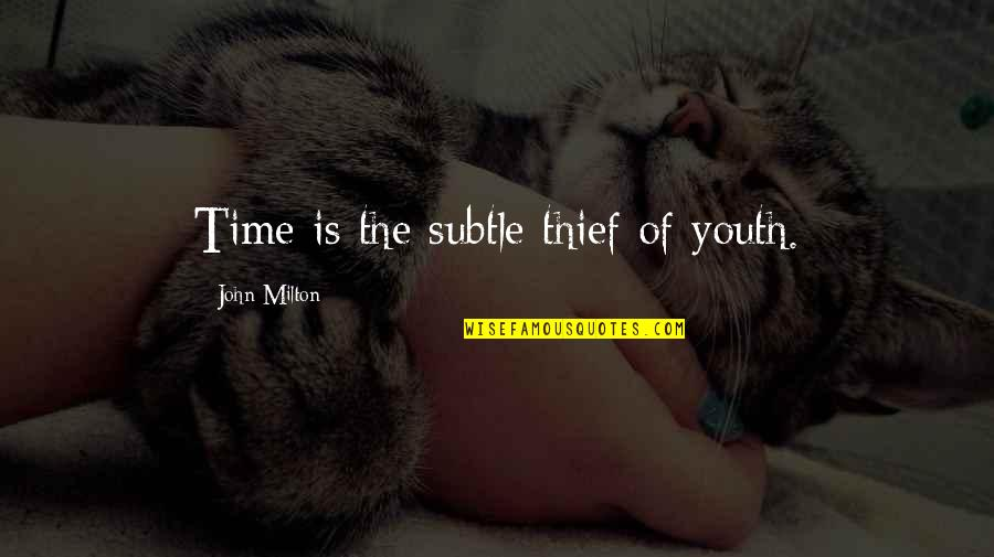 Time Thieves Quotes By John Milton: Time is the subtle thief of youth.
