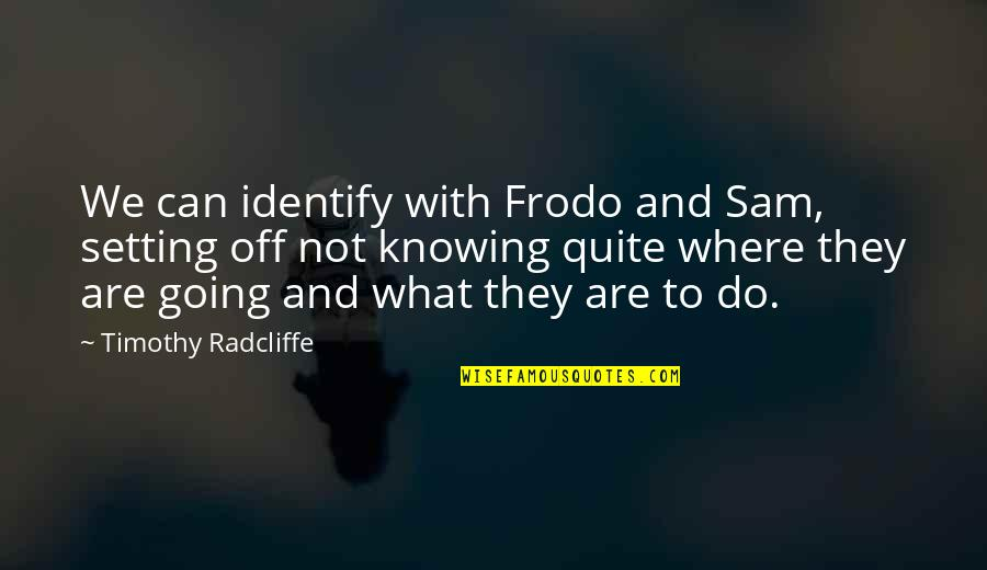 Timothy Radcliffe Quotes By Timothy Radcliffe: We can identify with Frodo and Sam, setting