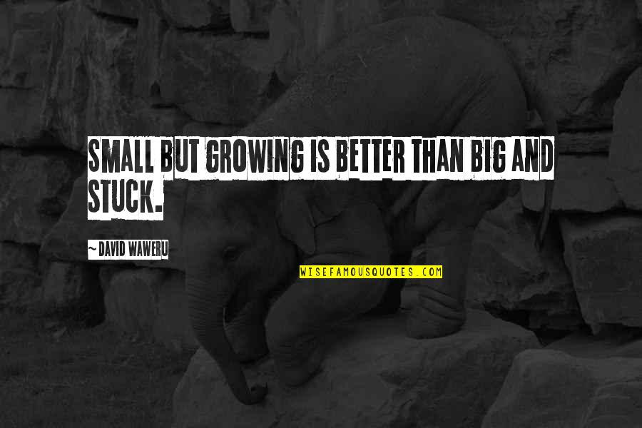 Tino Weekenders Quotes By David Waweru: Small but growing is better than big and