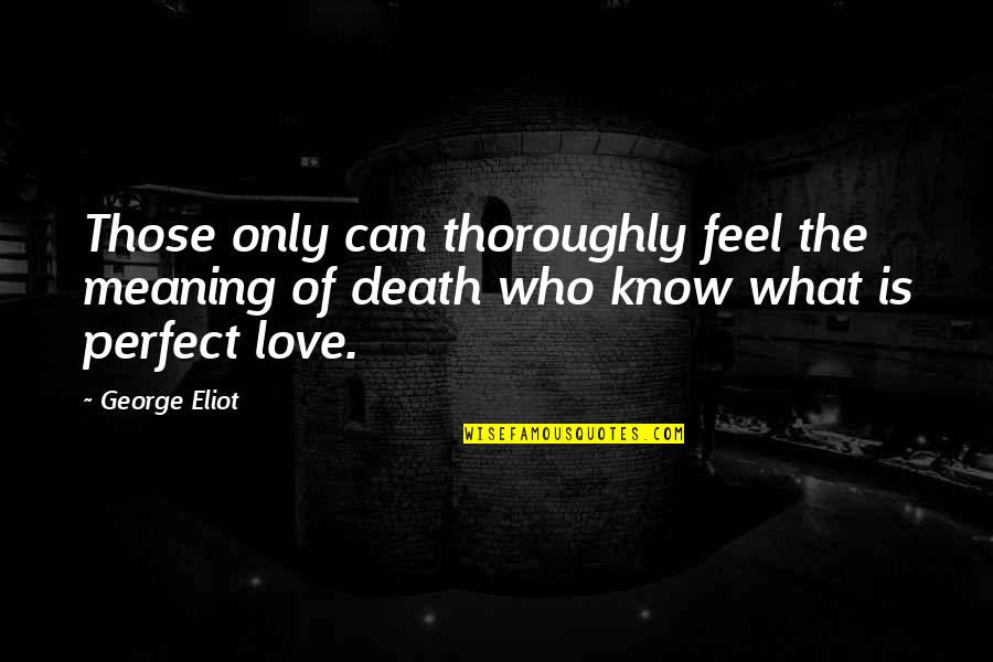 Tinware Quotes By George Eliot: Those only can thoroughly feel the meaning of